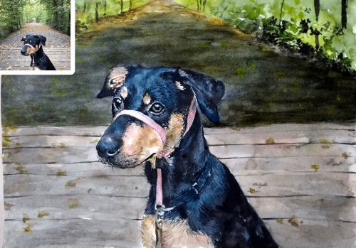 Watercolor Pet Potrait as birthday gift for him
