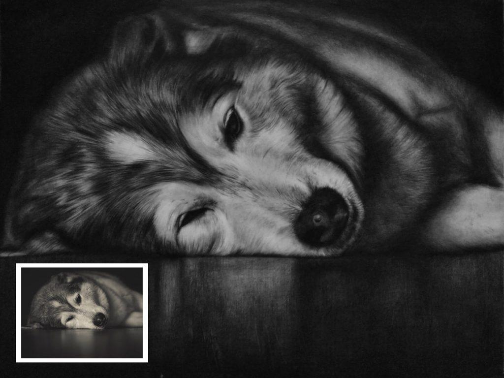 Handmade Pet Charcoal Portrait