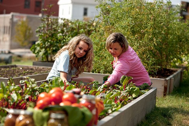 Do gardening Together (How to plan a Best surprise for Mother's Day: Gifts and Ideas)